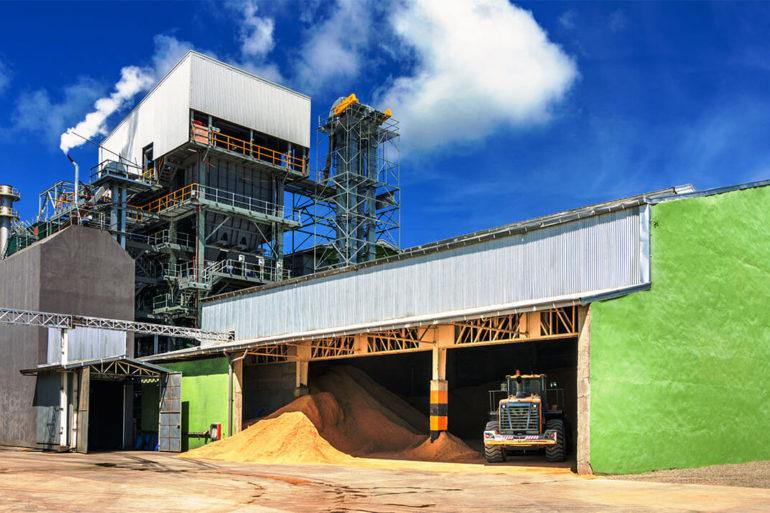 Choosing Biomass Energy