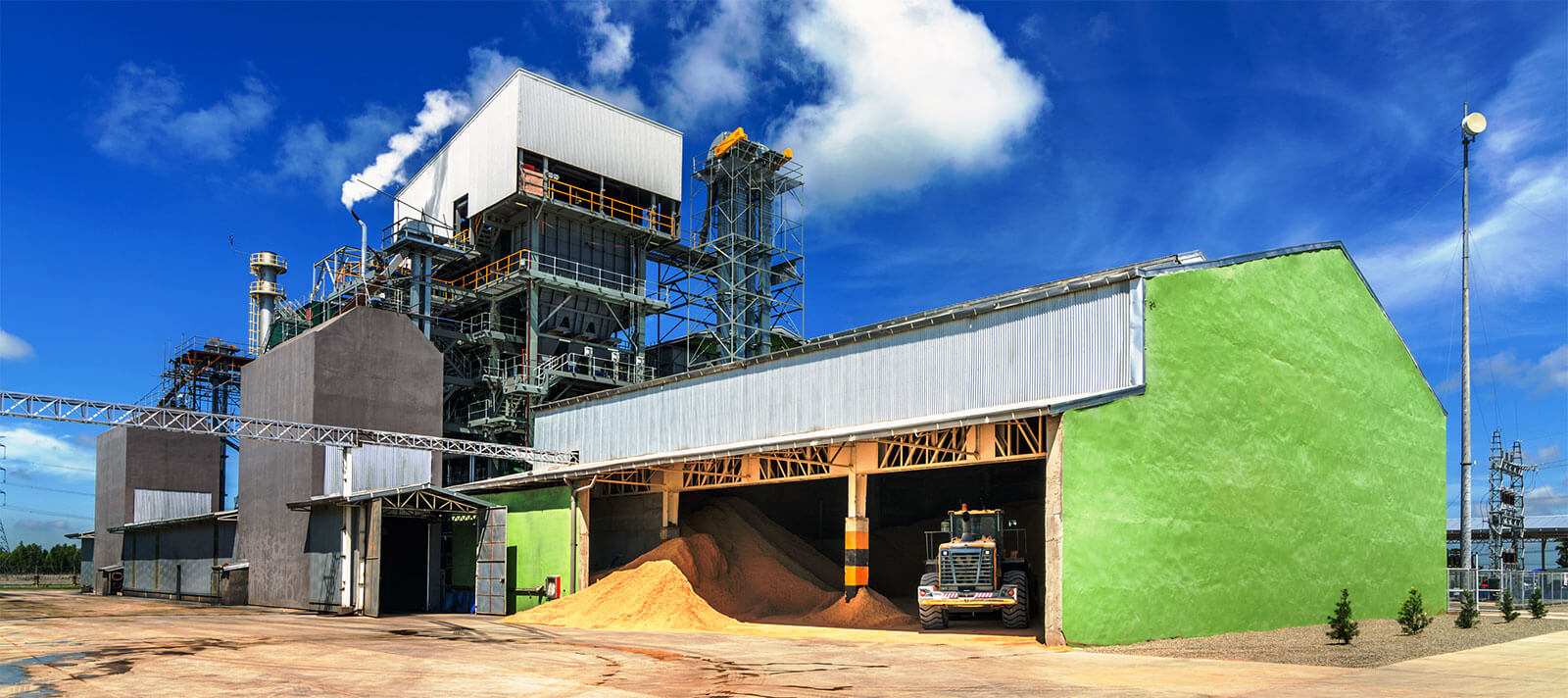 Choosing Biomass Energy