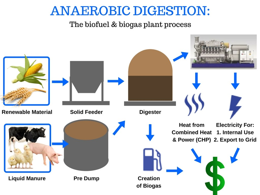 Green Biogas - Reurasia