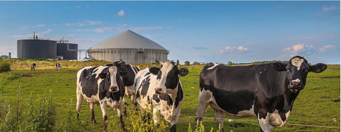 Reurasia - Biogas