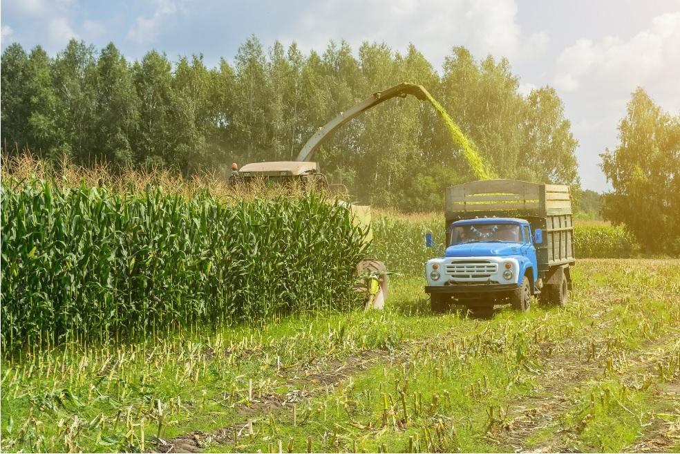 Biogas Harvest - Reurasia