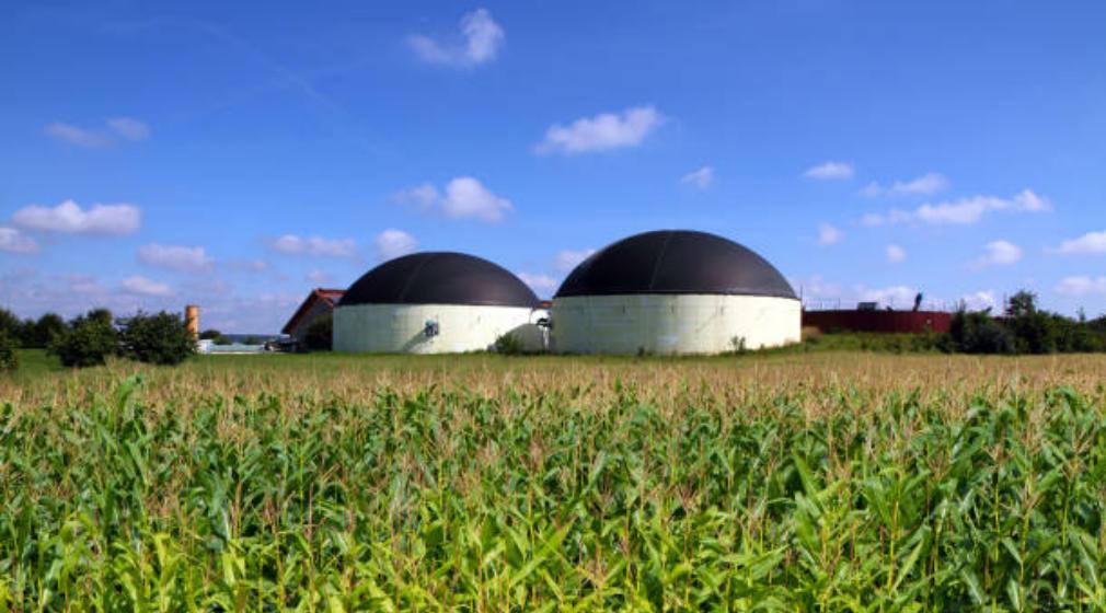 Renewable Like Biogas - Reurasia