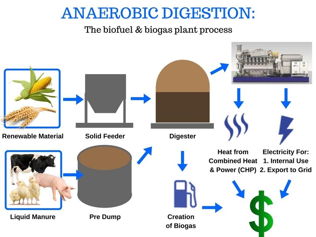 Anaerobic Digestion - Reurasia