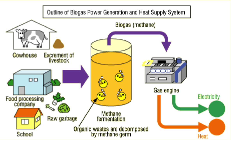 Outline Biogass - Reurasia